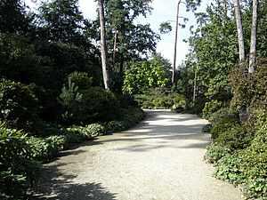Bois de Vincennes trail, Paris