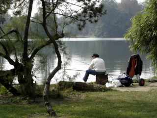 Fishermen in Bois de Boulogne, Paris
