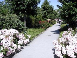Promenade Plantee, Paris elevated garden