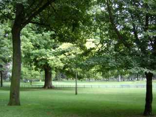 Parc du Ranelagh, Paris